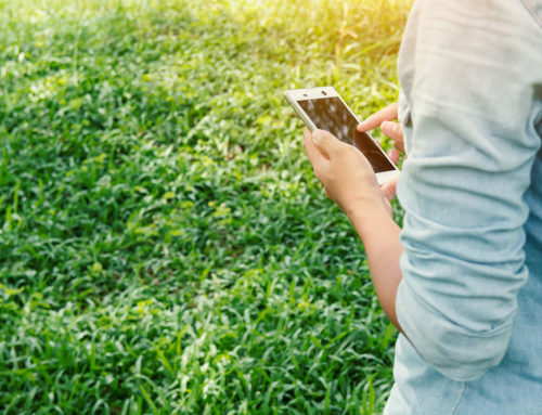 6 apps to take care of the environment