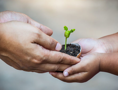 How to create environmental awareness in our children